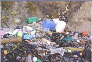 Plastic Trash